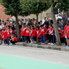 Ragazzi in corsa 2013 - IV Memorial Michele marino
