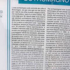 Botromagno