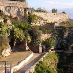 Erbacce San Michele delle Grotte