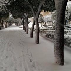 Neve a Gravina