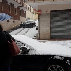 Disagi neve