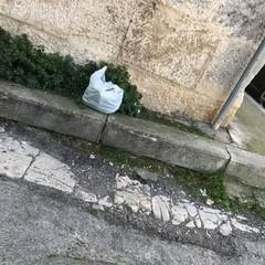 Buste di immondizia per le strade