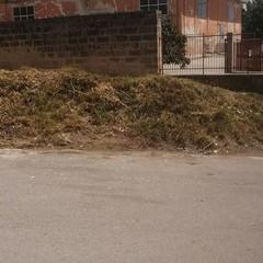 area ripulita dai rifiuti l giugno