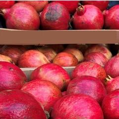 Frutta sequestrata dai Carabinieri Forestali