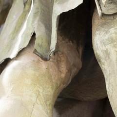 Dettaglio della gamba destra