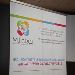 micro italia JPG