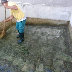 operai a lavoro per pulizia pilone