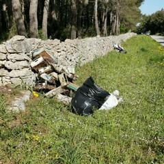rifiuti al Pulicchio