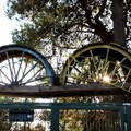 Riapertura del Parco Robinson