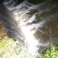 Sospetto caso di inquinamento del torrente Gravina