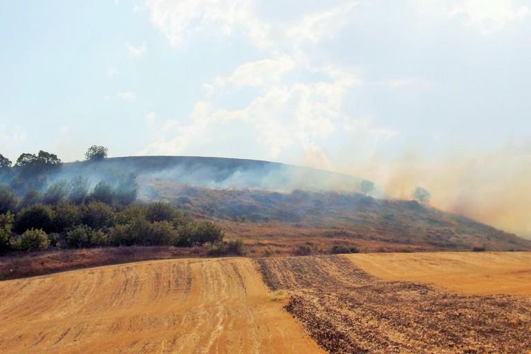 Incendio sulla collina di Botromagno. <span>Foto Carlo Centonze</span>