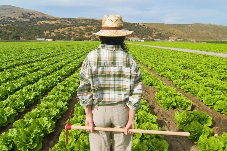 progetto AgriCultura