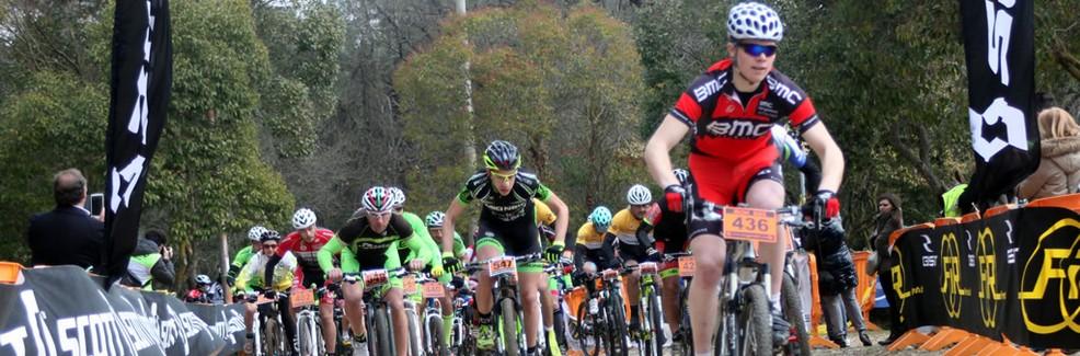 Amicinbici biciclette Losacco Bike