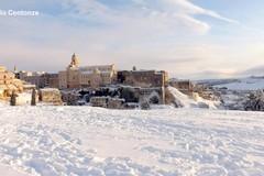 Decreto danni gelo: 17 i Comuni da risarcire nel Barese, tra cui anche Gravina e Altamura