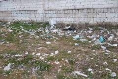 AAA cercasi decoro urbano a Gravina