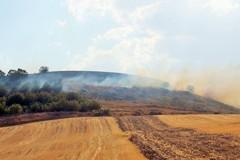 Piano antincendio: mercoledì incontro con aziende agricole e allevatori