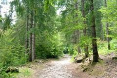 Trail delle 5 querce cambia formula e diventa liquido