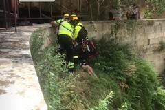 Tratto in salvo il giovane caduto nella gravina