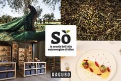 Nasce la prima Scuola dell'Olio extravergine d'oliva a Gravina