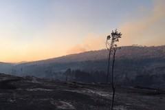Incendio al Bosco: tavolo tecnico tra Comune e Regione