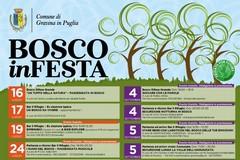 """Tante le iniziative per l'edizione 2020 del """"Bosco in festa"""""""