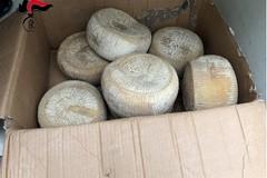Sagre del fungo cardoncello, sequestrati 200 kg di prodotti
