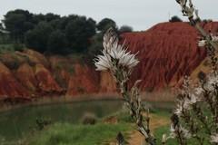 Scopri e fotografa il Patrimonio Geologico della Puglia