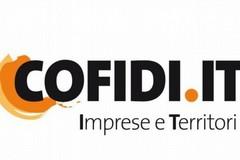 Cofidi.it: in videoconferenza approvato il bilancio e confermato CdA