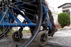300 firme per chiedere l'accessibilità di parchi e bosco ai disabili