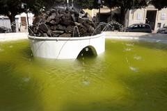 La vasca in villa è il regno delle zanzare