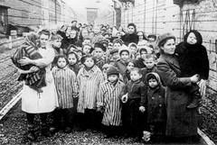 E' il giorno della memoria, il mondo si ferma per ricordare le vittime dell'Olocausto