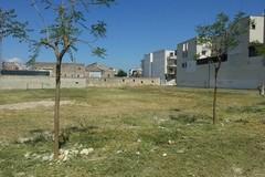 Parco via Alfieri, Varrese interroga il Comune
