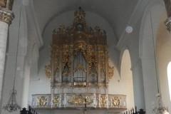 Nuova luce sul maestoso organo della Basilica Cattedrale
