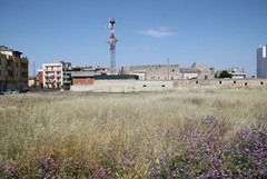 Parco di via Alfieri, Obiettivo giovani organizza una nuova pulizia