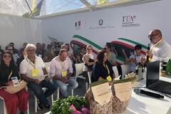 Coldiretti Puglia: gravi perdite per chiusura ristorazione e agriturismi