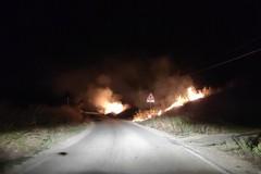 Incendio nei pressi del bosco