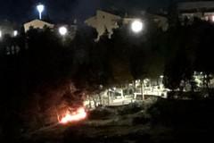 Incendio nella pineta comunale