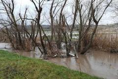 Maltempo: campi allagati, si contano i danni nella Murgia