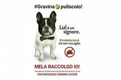 #melaraccolgoio!, contest fotografico a premi rivolto ai padroncini degli amici a 4 zampe