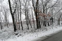 Colpo di coda dell'inverno nell'Alta Murgia
