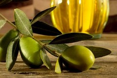 No all'ingresso di olio extra vergine di oliva dalla Tunisia