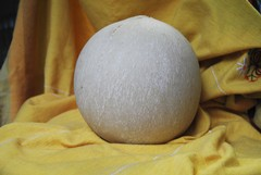 Il marchio Dop per il Pallone di Gravina