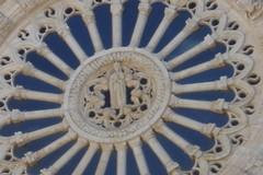 La Vergine Assunta nella iconografia della nostra Basilica cattedrale