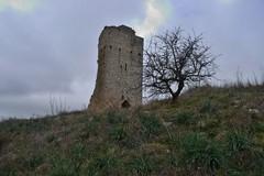 Torre di Belmonte Castrum Belli Montis