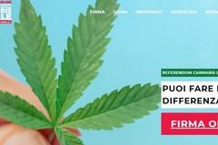Referendum Cannabis, risolti i problemi con le firme