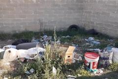 Problema rifiuti e pulizia della città fanno ancora discutere