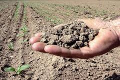 Siccità: In arrivo ulteriori agevolazioni per agricoltori