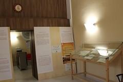 Storia dei Sinodi nella Diocesi di Gravina