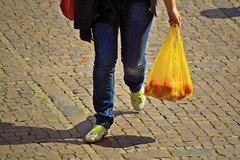 Sacchetti di plastica vietati, controlli nei Comuni del Parco