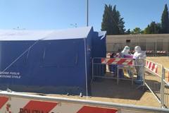 Covid, nuovo record di contagi a Gravina